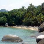 Sun, palms, beaches!