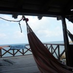 View from my hammock...