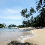 The beach itself.