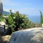 ... or along the shoreline ...