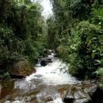 A beautiful river.