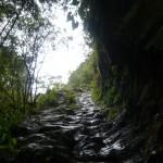 Hiking uphill.