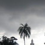 Palms, statues, churches II.