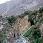 Down at the Colca river.
