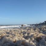 Foam at the beach.
