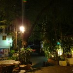 View of the guesthouse garden.