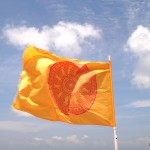 The Dharmacakra flag, symbol of Buddhism in Thailand.