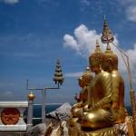 More Buddhas.