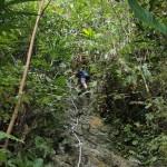 Climbing up.
