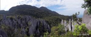 Big limestone needles.