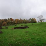 Rivulet-hike 11: Despite heavy rain...